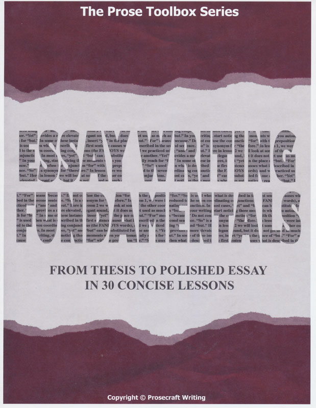 english fundamentals essays Professional academic help starting at $699 per pageorder is too expensive split your payment apart - english fundamentals essays white.