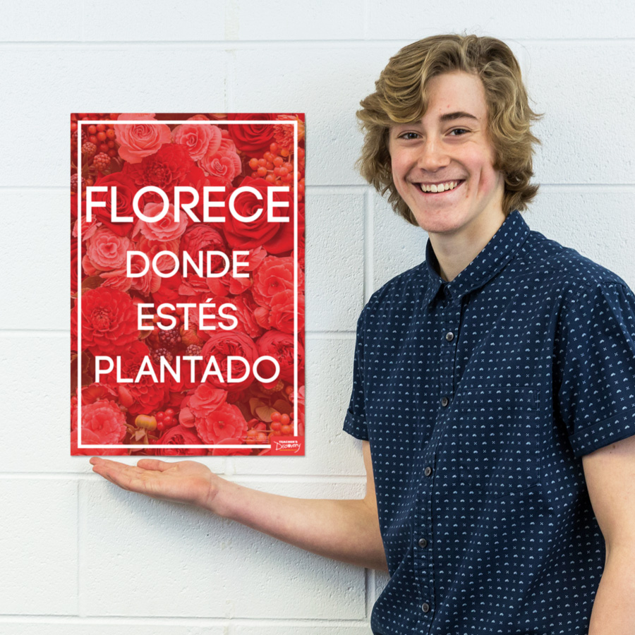 Bloom Spanish Mini-Poster