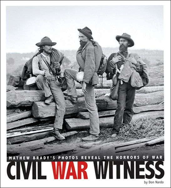 Civil War Witness Book