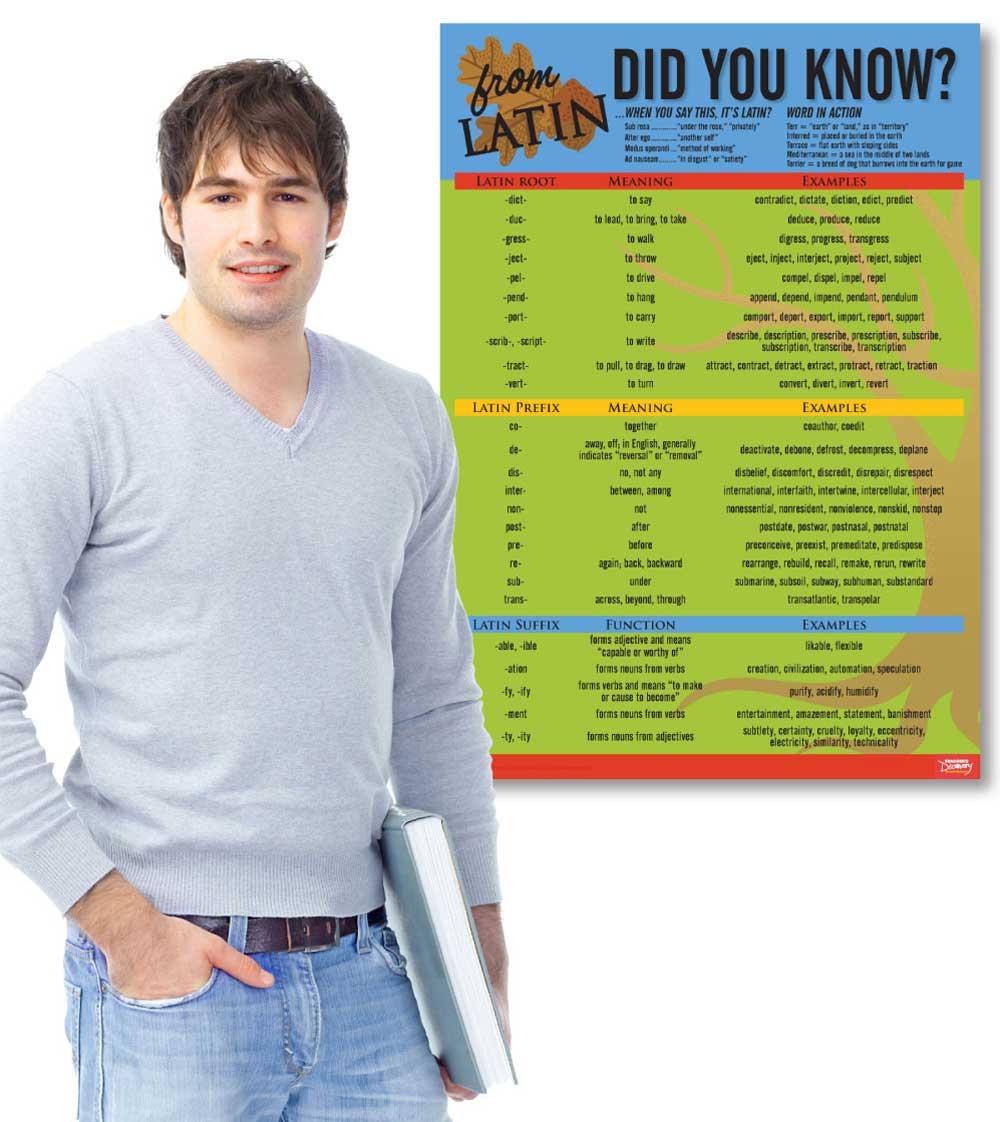 Latin Language Common Roots Poster
