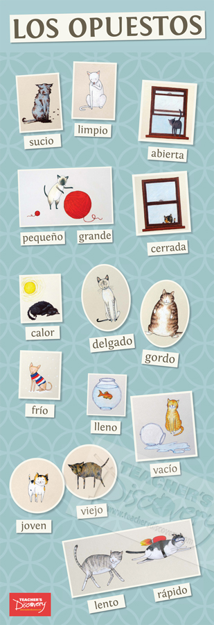 Opposite Cats Spanish Skinny Poster