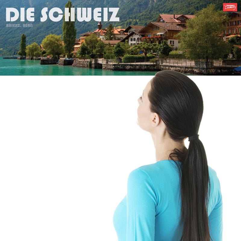 Switzerland Panoramic German Poster
