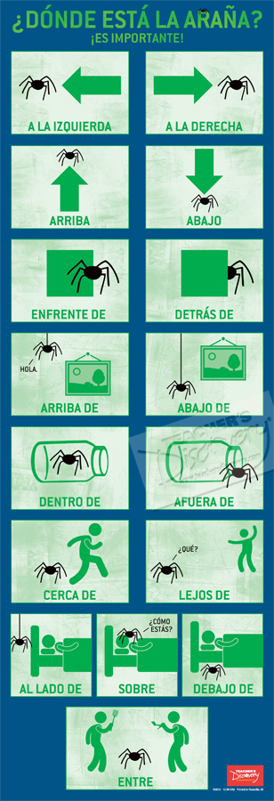 Direction Words Skinny Poster Spanish