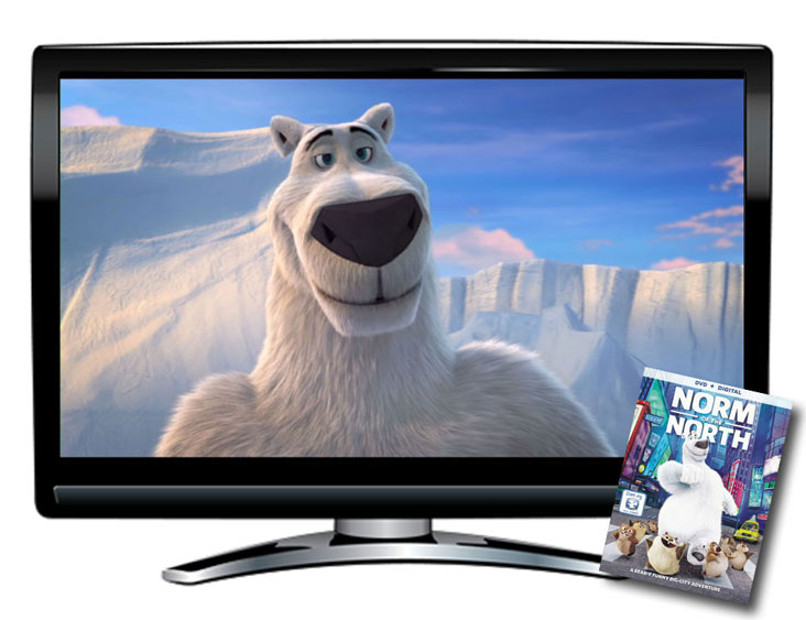 Norm of the North Spanish/English DVD