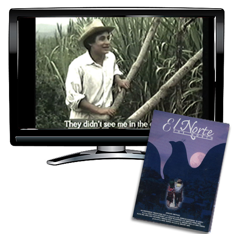 El Norte Spanish DVD