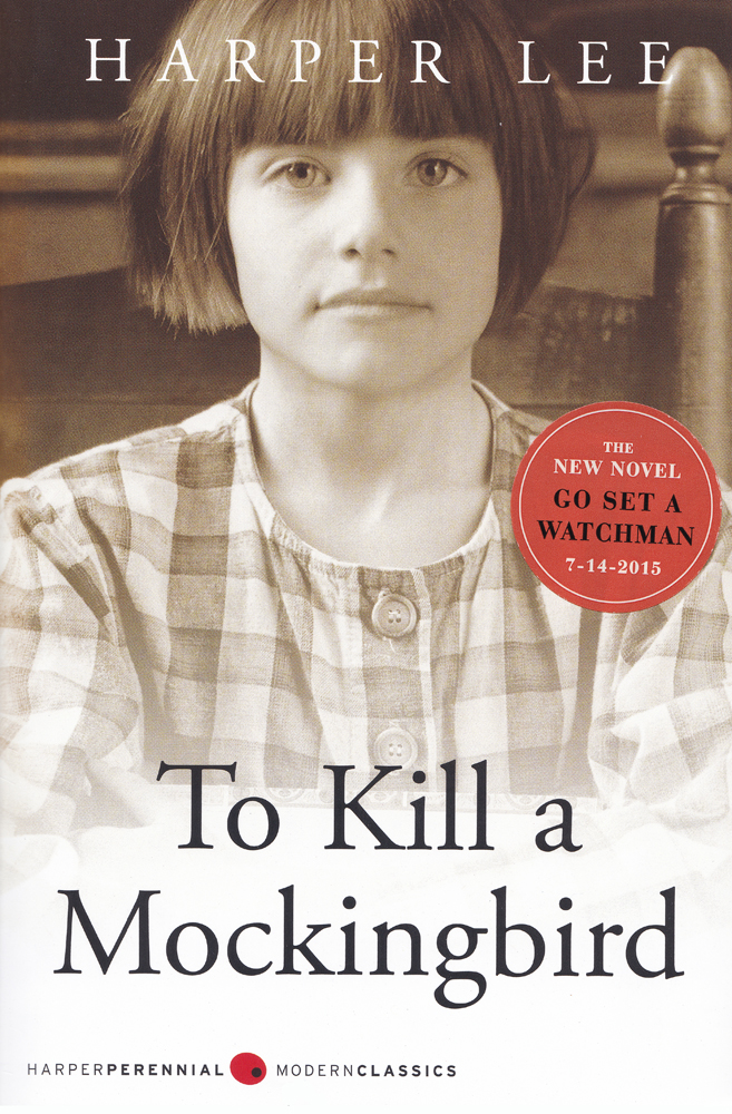 a critique of the novel to kill a mockingbird by harper lee